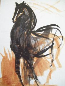 Black horse with brown grass