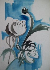Chrisantemum in watercolour