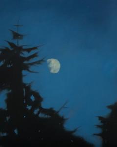 Moon through the Trees