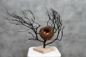 Wicked Nest