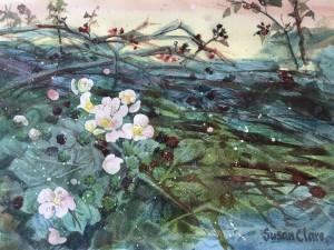 Brambles & Blossom