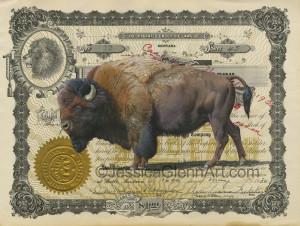 In Bison We Trust