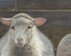 Waiting For The Shepherd