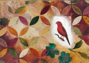 Australian Crimson Finch