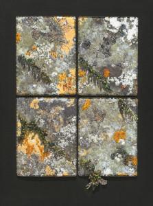 Lichen on Gravestone, Ireland