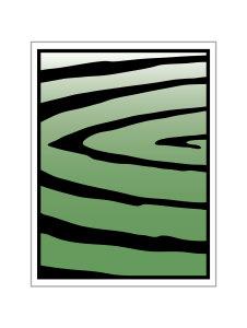The Curves (Unframe print)
