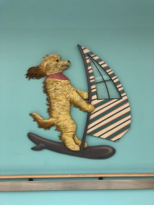 Sailboarding Dog