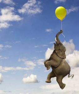 Elephant Grasping the Balloon String
