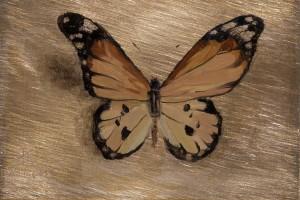 Tribute Butterfly #2