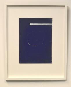 Blue cover III