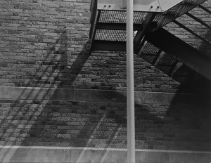 Shadows 6