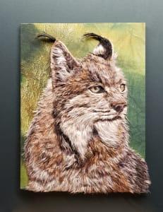 Lynx Graceful Wildlife