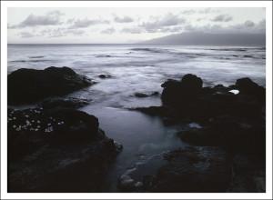 Mauai Muse