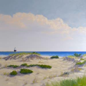 Henlopen Dunes