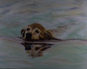Last Swim