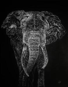 大象摇摇地球
