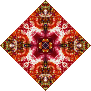 红锦瓷砖6