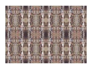 明智的盾牌地毯
