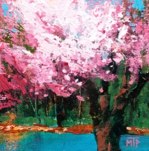 Blossoming Cherry Tree Study