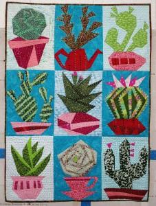 Crazy Cacti