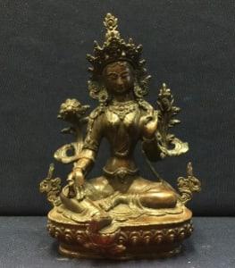 Tara 1