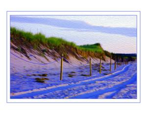 Blue Sand Fence