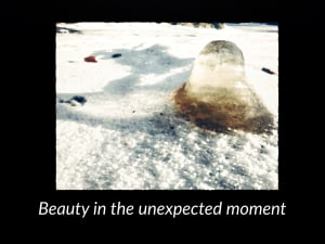 Beauty In The Unexpected Moment
