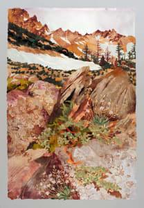 """""""Rock Crevice, Cascade Mountains"""""""