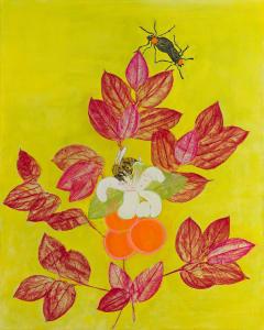 橙色柑橘与粉红色
