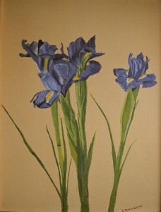 Small Purple Iris