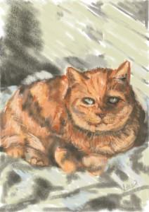 Max Cat