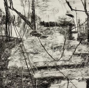 2169, Juanita Bellavance, Chestatee 38, From the Chestatee portfolio, 2021, Charkole on paper, 16 x 16 inches