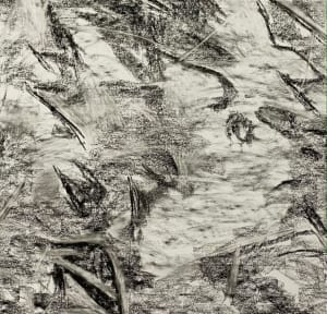 2170, Juanita Bellavance, Sketch 3, From the Chestatee River portfolio, Charcoal on paper, 24 x 24 inches