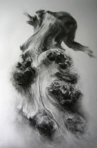 Dalkeith burred oak 5