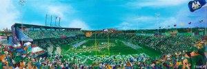 Tulane Yulman Stadium