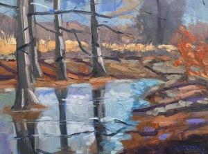 Frozen Reflections, 01/03/2016