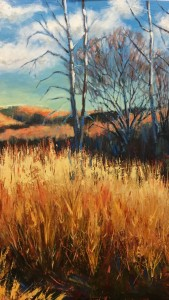 The Thrum of Prairie Grass