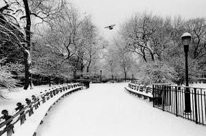 Tompkins Square, NYC