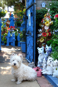 Tuffy and Friends, El Jardin Azul