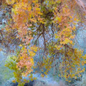 15 works from Zen series