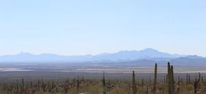 Baboquivari Mountain Range from the Desert Museum