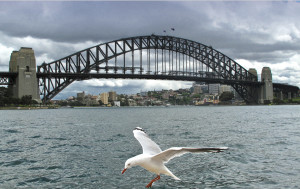 Birdseye View of the Sydney Harbor Bridge