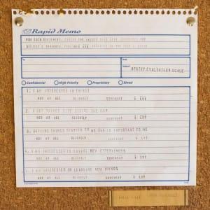 Apathy Evaluation Series # 1