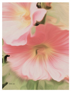 Hollyhocks, After O'Keeffe