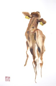 Portrait of calf #0206