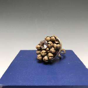 Seeds and Diamond Ring