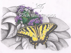 Butterfly No 3 Print