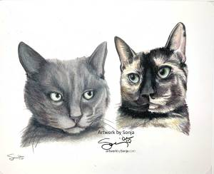 Smokey and Calico Cat Portrait