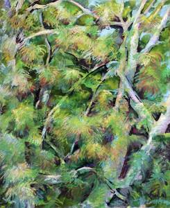 Brush & Branch, Balmoral Hillside