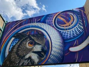 猫头鹰壁画